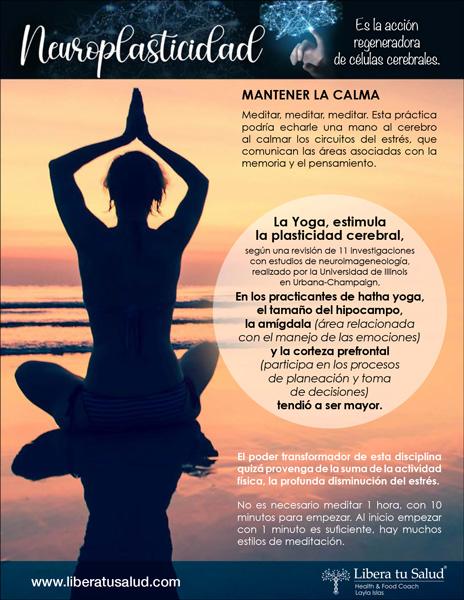 libera-tu-salud-health-coach-herramientas-cuerpo-y-mente-neuroplasticidad-ficha-7