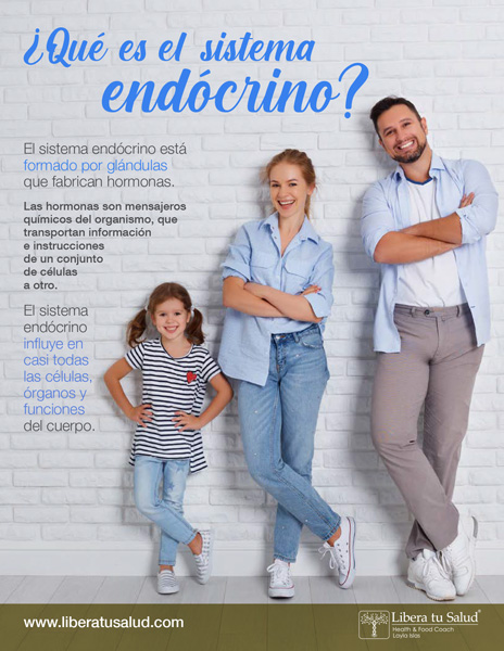 libera-tu-salud-health-coaching-conoce-mas-sistema-endocrino